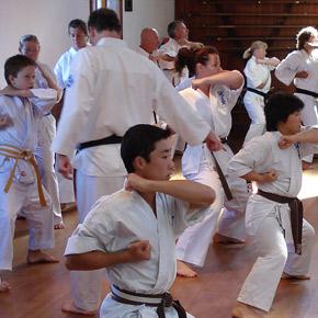 About Seido Karate